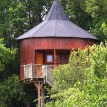 Cabane dans les arbres dans village d'hébergements insolites