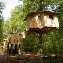 Cabane dans les arbres à Rhodes en Moselle