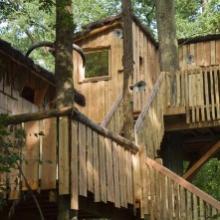 Cabane dans les arbres dans les Vosges mosellanes