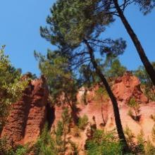 Locations de vacances dans le Vaucluse