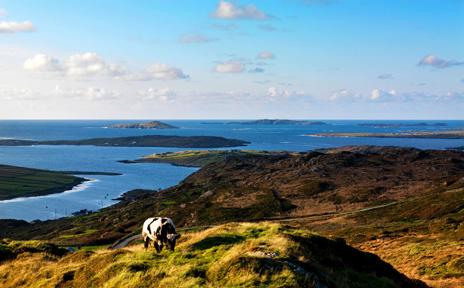 Paysage de l'Irlande